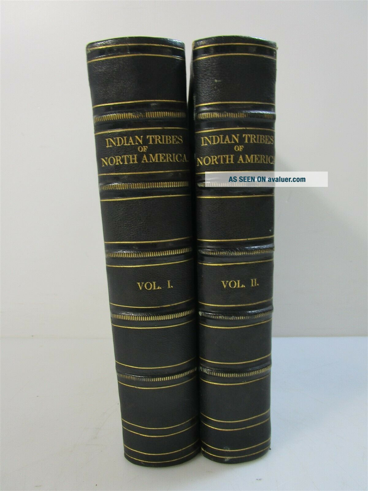 History of Indian Tribes of North America Vol.  1 & 2 1872 Thomas McKenney
